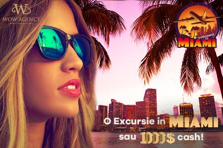 Excursie Miami cu WOW Agency